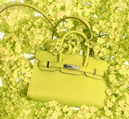 hermes_tiny_kelly_bags_collection_11_nmk