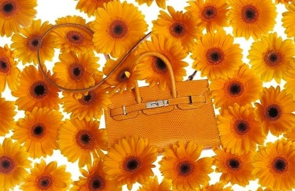 hermes_tiny_kelly_bags_collection_4_lk