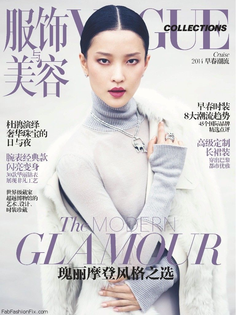 Vogue_China_Collections_Cruise_2014__December_2013_Supplement__-_Du_Juan_by_Cedric_Buchet-00-cover