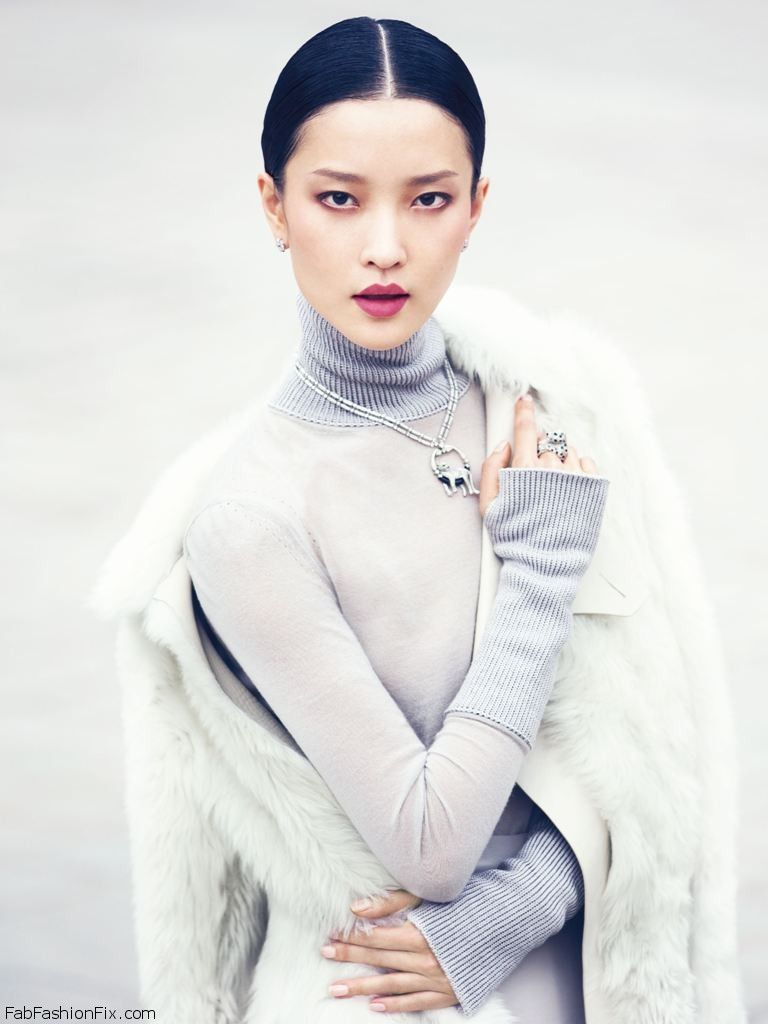 Vogue_China_Collections_Cruise_2014__December_2013_Supplement__-_Du_Juan_by_Cedric_Buchet-00-cover_without_types