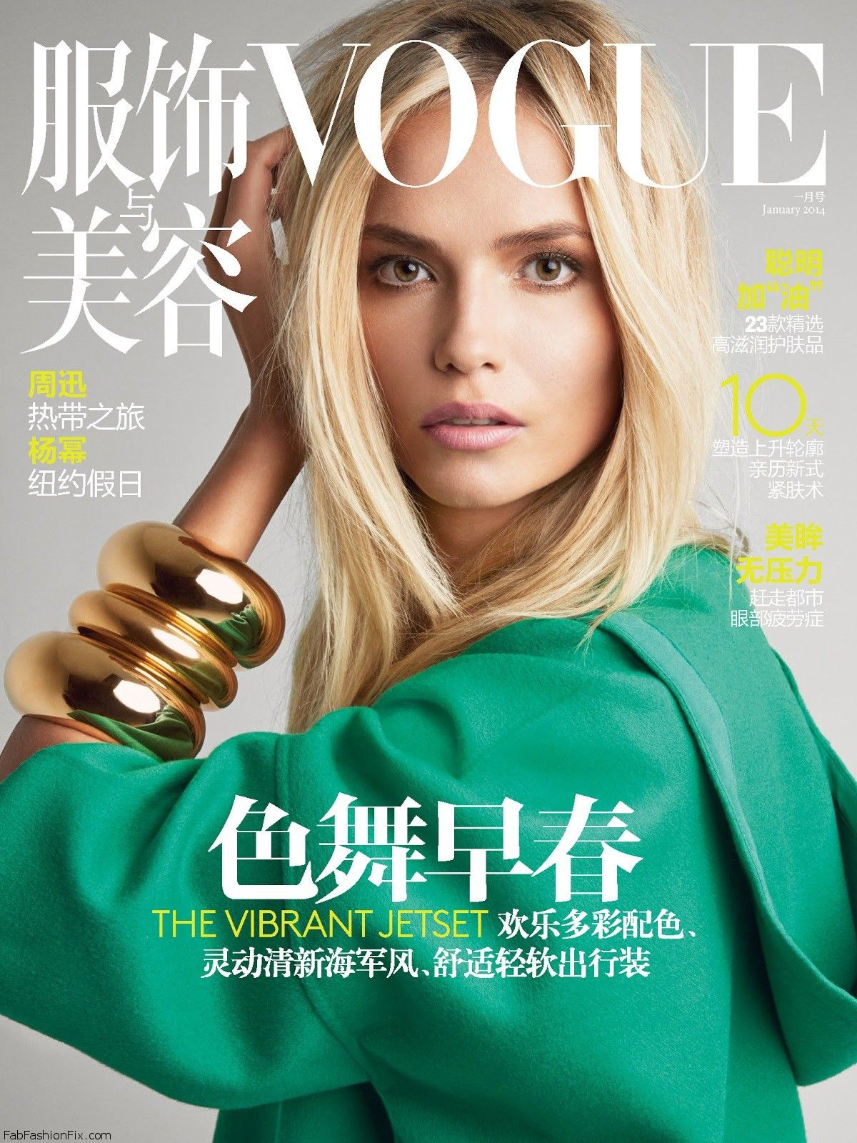 Natasha Poly by Patrick Demarchelier for Vogue China January 2014 (Colour Me Happy) (0)-cover