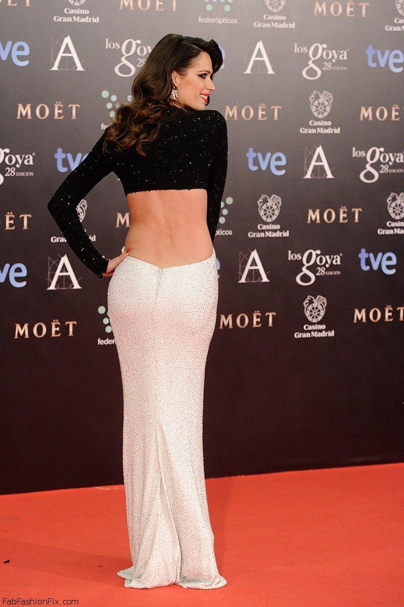 todas_las_imagenes_de_celebrities_en_la_alfombra_roja_de_la_28_edicion_de_los_goya_2014_687195022_800x