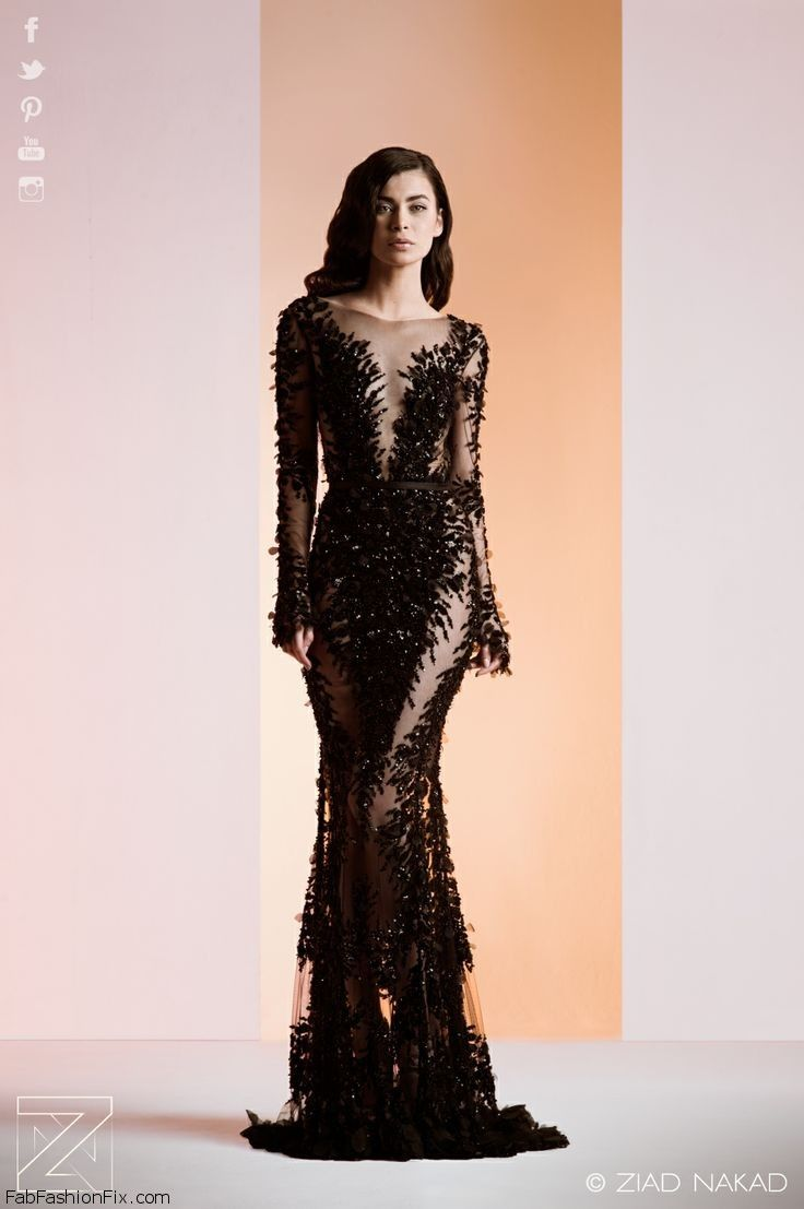Ziad Nakad Haute Couture Spring Summer 2014 Collection