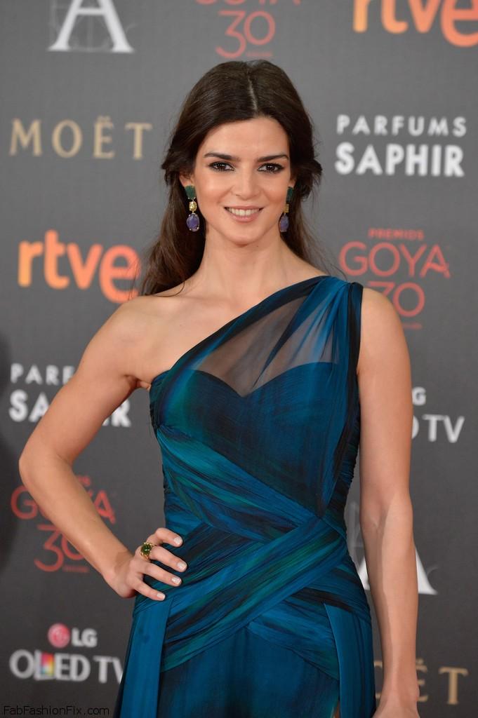 Goya+Cinema+Awards+2016+Red+Carpet+uUatxf0pHGEx