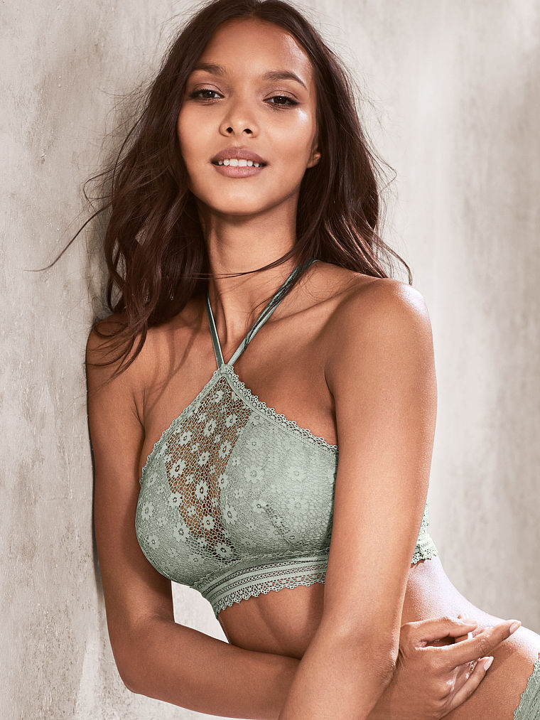 valentines-day-2017-victorias-secret-1484