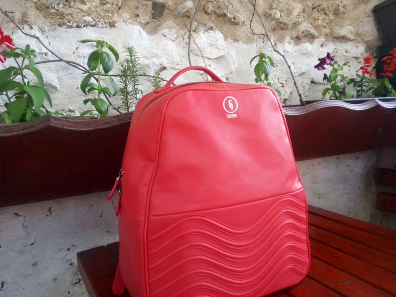 gouboi_backpack_review